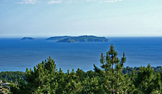 hotel-bosque-mar-ogrove-isla-ons