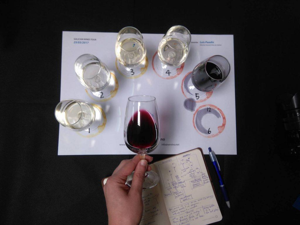 Catando vinos sin perderse ni un solo matiz